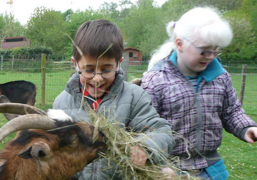 Two children feeding a goat during Braille Day 2012.